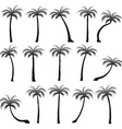 Set silhouettes of palm trees isolated on white vector image vector image