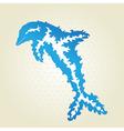 decorative dolphin vector image