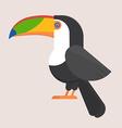 Toucan Bird Flat Icon vector image
