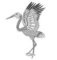 Hand drawn Brolga Australian crane for antistress vector image