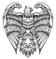 Powerful eagle or griffin vector image