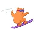 teddy-bear on a snowboard vector image
