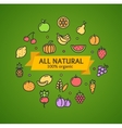 Fruits and Vegetables Concept vector image