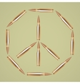 Rifle bullets vector image