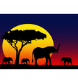 My Africa vector image