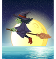 Witch and fullmoon vector image