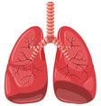 Lung diagram of pneumonia vector image vector image
