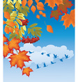 autumn forest vector image vector image