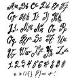alphabet brushpen 4 vector image vector image