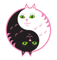 Cute cats yin yang vector image