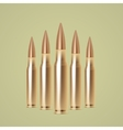 Rifle bullets vector image vector image
