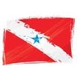 Grunge Para flag vector image