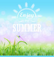 green grass lawn with bokeh blue sky enjoy summer vector image