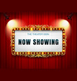 theater sign on curtain vector image