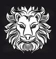 white lion head on blackboard vector image