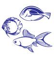 tropical fish set vector image vector image