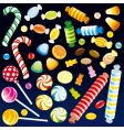 sweet candies vector image vector image