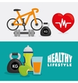 healthy lifestyle icon set design vector image