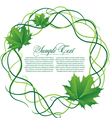background with flaral frame vector image vector image