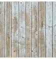 Painted Rural Fence vector image