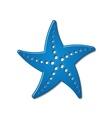 Starfish vector image