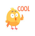 funny cartoon comic chicken showing thumb up vector image
