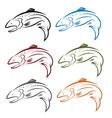 set of salmon fish vector image