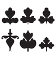 Decorative black leaves pattern set isolated vector image