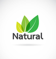 Natural icon vector image vector image