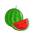 Fruit watermelon vector image