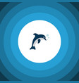 isolated dolphin icon flat playful fish vector image
