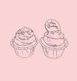 Birthday cupcakes party sketch vector image