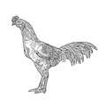 Line art of cock with coloring isolated on white vector image