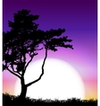 Silhouette of Tree on Sunset Background vector image