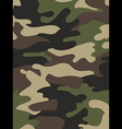 Camouflage pattern background Woodland style vector image