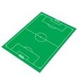 Green Soccer Stadium vector image