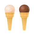 ice cream vanilla and chocolate isolated vector image