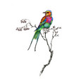 watercolor drawing bird artistic painting vector image