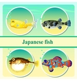 Set of four japanese sea fish vector image