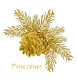 Fir tree branches with pine cone in golden color vector image