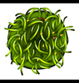 A topview of a vegetable sushi vector image