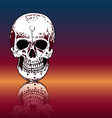 Drawing human skull with reflection on color vector image