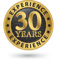 30 years experience gold label vector image vector image