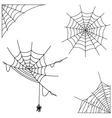 Cartoon spider web collection set vector image