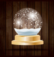 christmas crystal ball with snow on wooden vector image