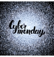 Cyber Monday Silver Poster vector image