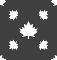 Maple leaf icon Seamless pattern on a gray vector image