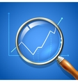 Magnifier and chart vector image