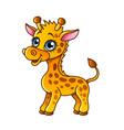 cartoon giraffe isolated vector image