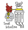 metaphor function of small intestine to make vector image